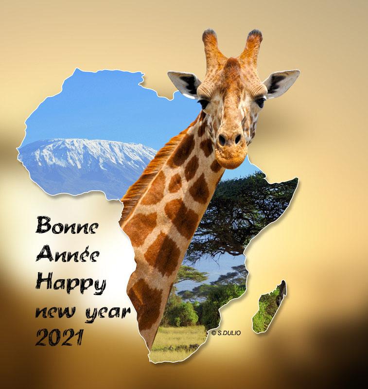 Voeux Afrique